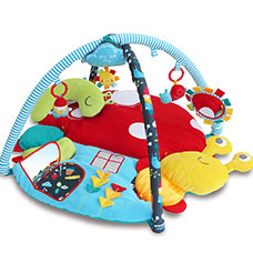 Play Gyms & Play Mats